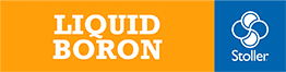 Liquid Boron